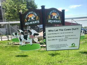 Middlesex Makes a Moove with Mental Health