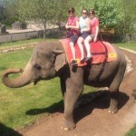 delegates-on-elephants