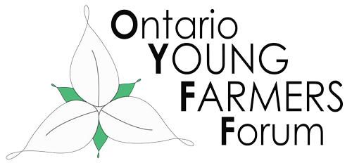logo OYFF